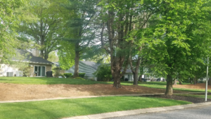 Houmes for sale Shady Oaks Middletown